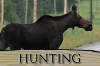 Small Game Hunting at Lac Seul accomodations for moose deer and bear hunts